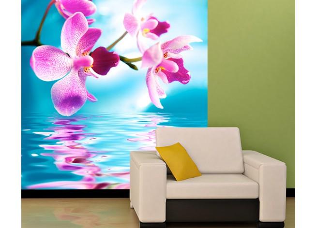 Фотообои Орхидеи и их отражение в воде