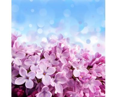 Фотообои Цветы сирени и красивое боке