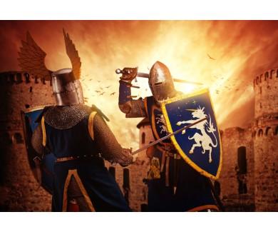 Фотообои Средневековый бой