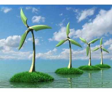 Фотообои Ветряные мельницы
