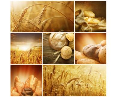 Фотообои Коллаж - хлеб