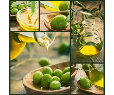 Фотообои Коллаж - оливки