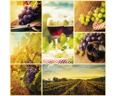 Фотообои Коллаж - виноград