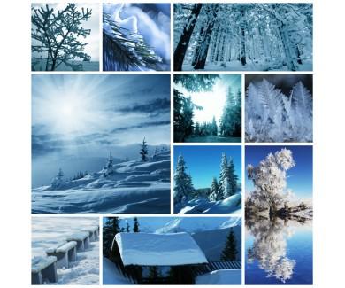 Фотообои Коллаж - зима