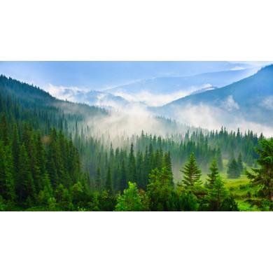 Фотообои Красивые горы в Карпатах