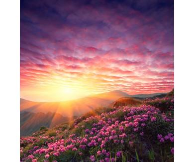 Фотообои Весенний горный пейзаж
