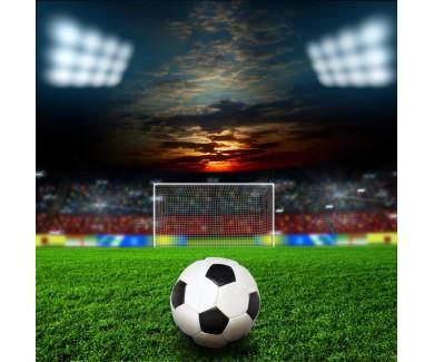 Фотообои Мяч перед воротами