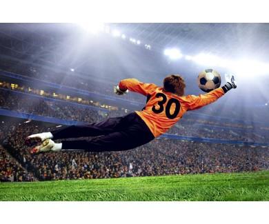 Фотообои Вратарь отбивающий мяч