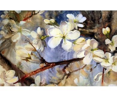 Фотообои Акварель из цветущих веток деревьев с белыми цветами