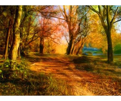 Фотообои Красивый пейзаж, отображающий все краски природы