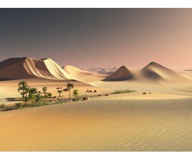 Фотообои Оазис в пустыне