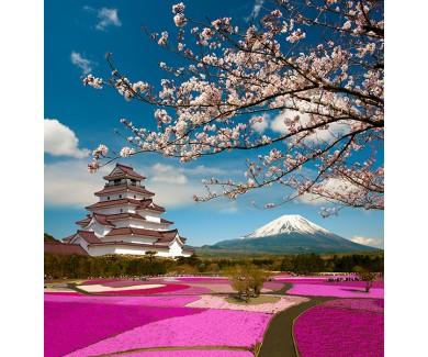 Фотообои Вид на замок, гору и цветущую сакуру