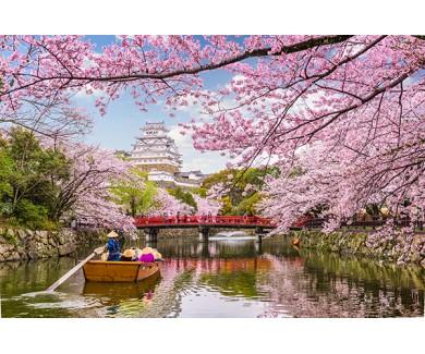 Фотообои Химэдзи весной