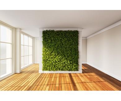 Фотообои Зелёная стена в интерьере