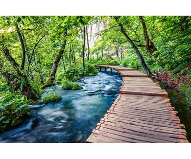 Фотообои Красивый вид на весенний пейзаж