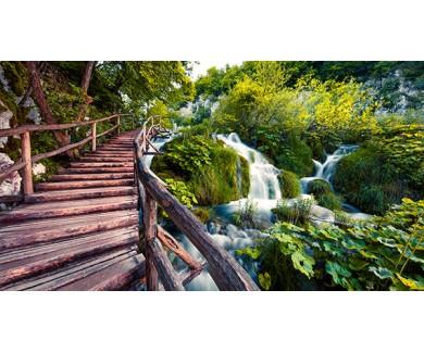 Фотообои Утренний вид на парк с моста