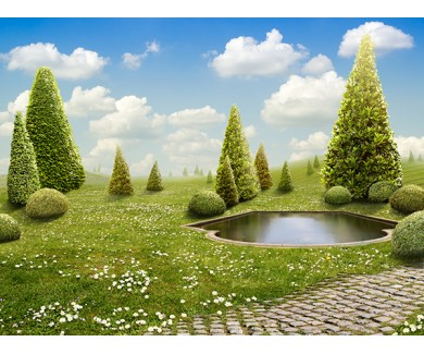 Фотообои Зелёный парк и пруд