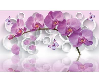 Фотообои Орхидеи и бабочки