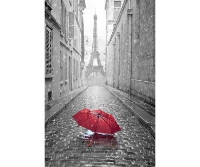 Фотообои Зонт на улице