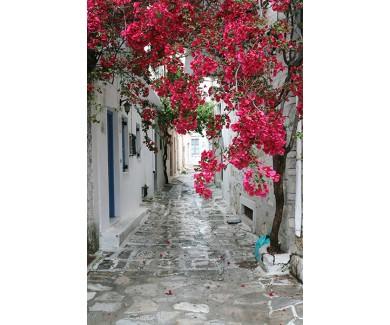 Фотообои Улочка в Греции