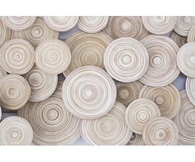 Фотообои Деревянные круги