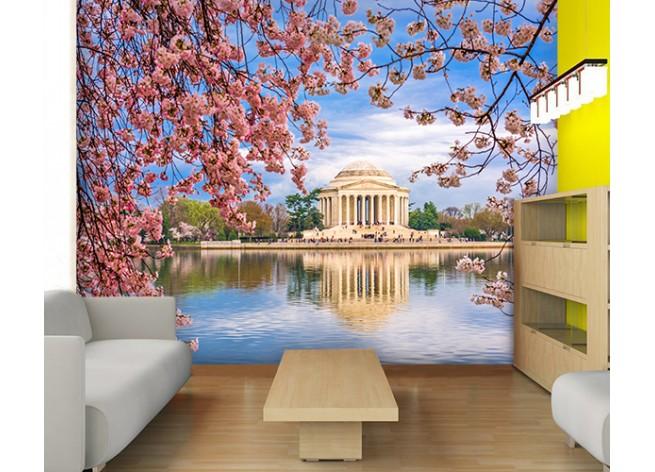 Фотообои Вашингтон весной
