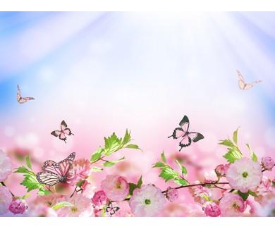 Фотообои Весенняя сакура и бабочки