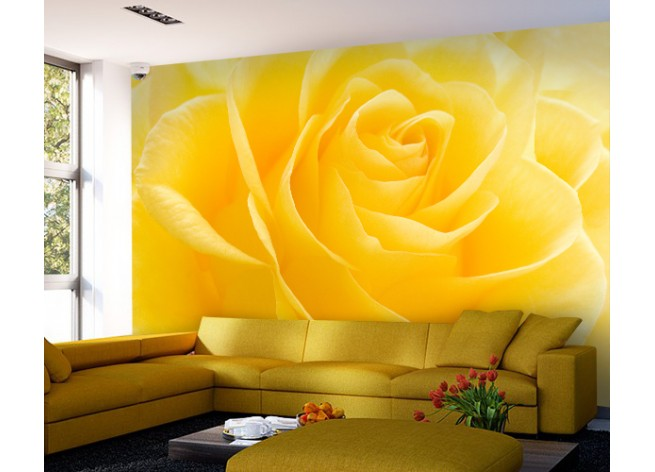 Фотообои Желтая роза макро снимок