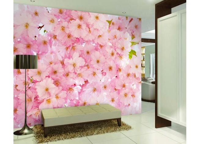 Фотообои Красивый фон цветение вишни