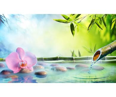 Фотообои Орхидея, бамбук и камни