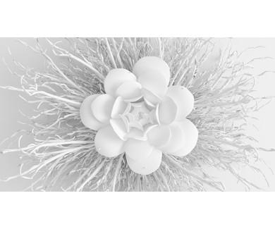 Фотообои Бумажный цветок на белом фоне