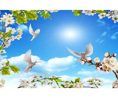 Фотообои Весна и голуби