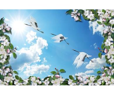 Фотообои Журавли на фоне неба