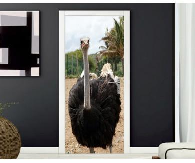 Наклейка на дверь Любопытный страус