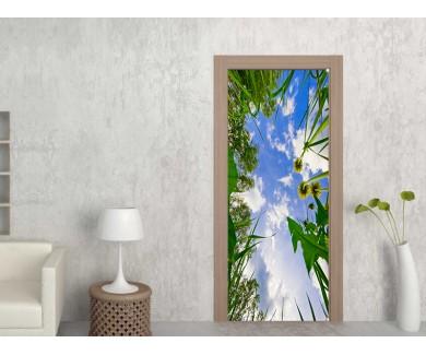 Наклейка на дверь Вид из травы на небо