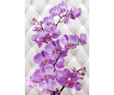 Фотообои Цветы на фоне дивана