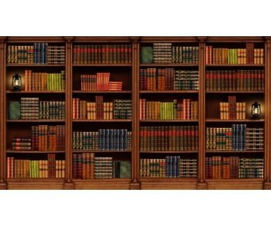 Фотообои Большая полка с книгами