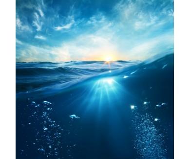 Фотообои Под водой