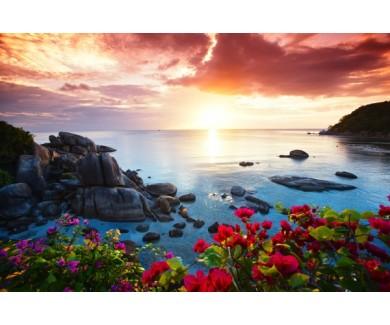 Фотообои Цветы в лучах заката