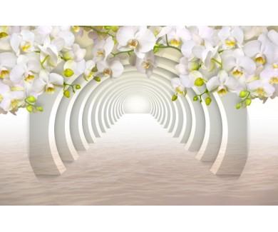 Фотообои Белые цветы на фоне арочного свода