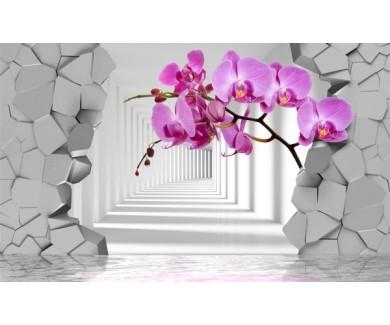 Фотообои Орхидеи на фоне разлома