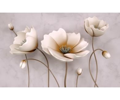 Фотообои Цветы и тени