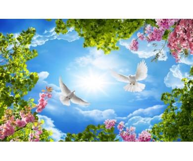 Фотообои Голуби в небе