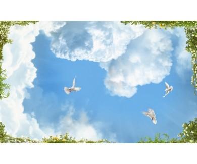 Фотообои Голуби в небесах