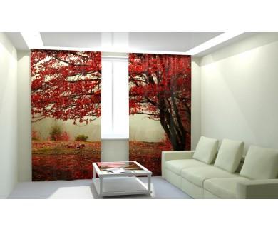 Красный листопад