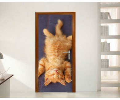 Наклейка на дверь Котёнок, спящий на спине