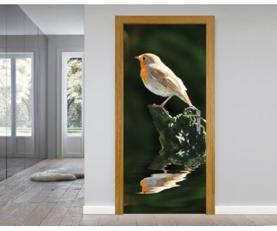 Наклейка на дверь Европейский Робин сидящий над водой