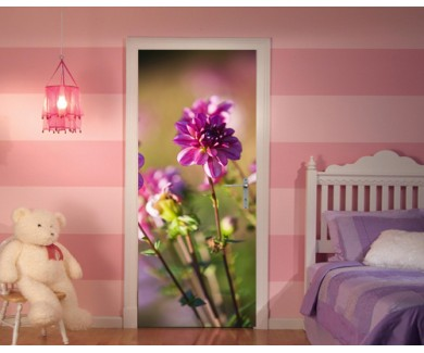 Наклейка на дверь Розовые георгины в солнечном свете