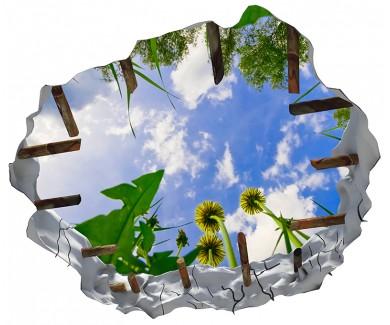 Наклейка на потолок Вид из травы на небо