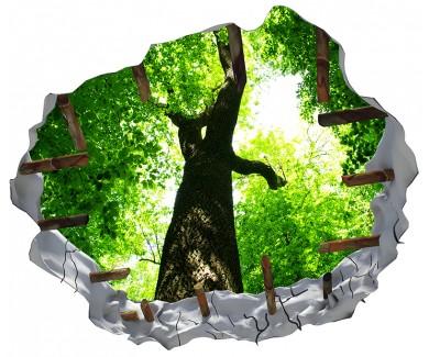 Наклейка на потолок Лес деревьев, вид на небо